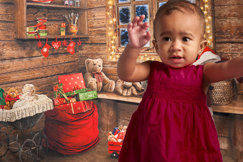Christmas Photography Session - Robertson Photography Studios